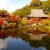 奈良の紅葉は長岳寺がおすすめ!地元民も愛する景色