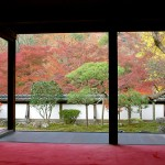 奈良の紅葉は正暦寺で決まり!屈指の名所で秋を満喫